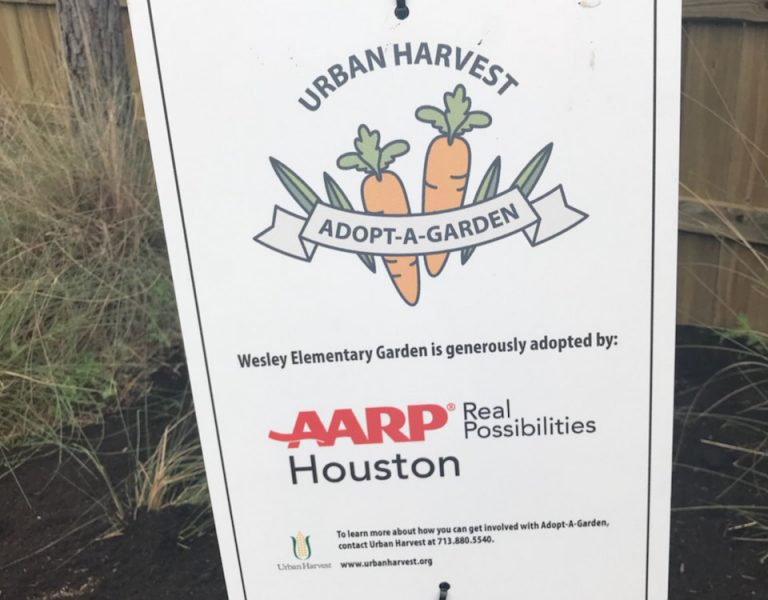Read more about the article Adopt-A-Garden Program Brings Healthy Foods To Complete Communities