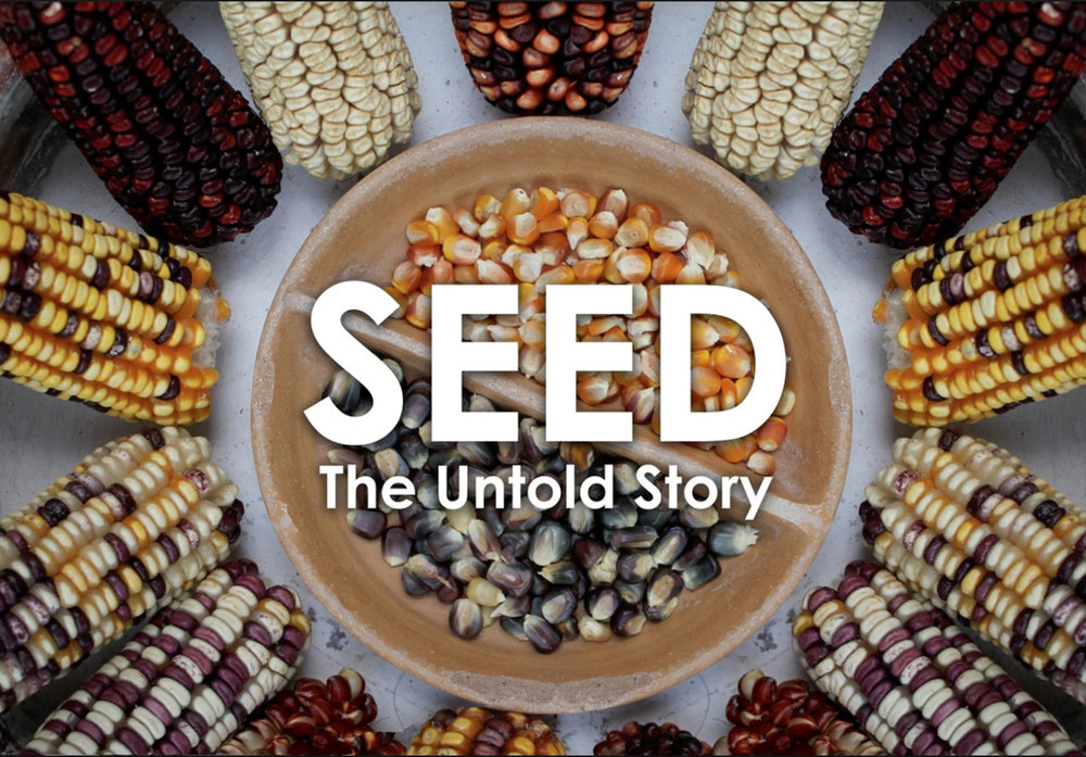 seed_title_2
