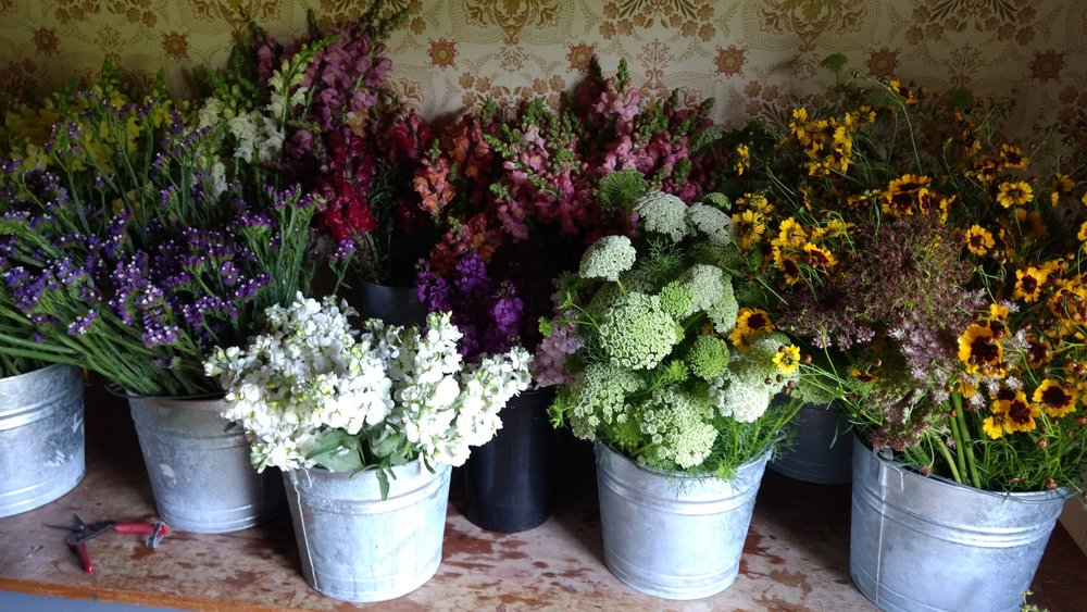 Growing Cut Flowers in your Vegetable Garden