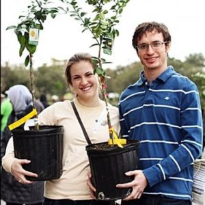 Read more about the article The Chronicles of the Fruit Tree Sale (Part ONE)