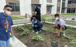 Read more about the article 2021 Summer Internship: Digging into Community