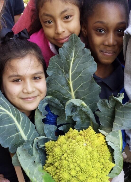 2020.10.7 Top Ten Cool Weather Vegetables Girls with Cauliflower
